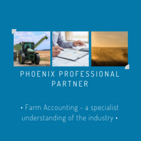 Phoenix Professional Partner