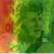 Elvis Elevation Data