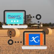 Phoenix Phones Home
