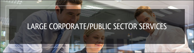 Corporate or Public Sector