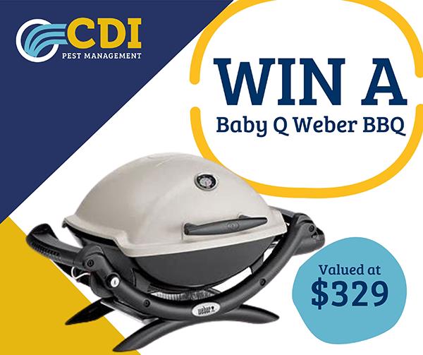 Win a Baby Q Weber BBQ