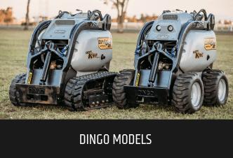 Dingo Models